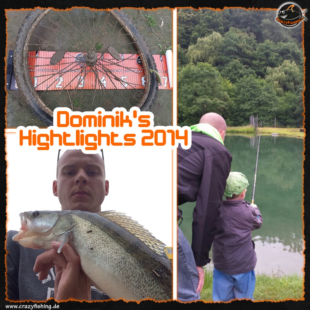 domnik_collage