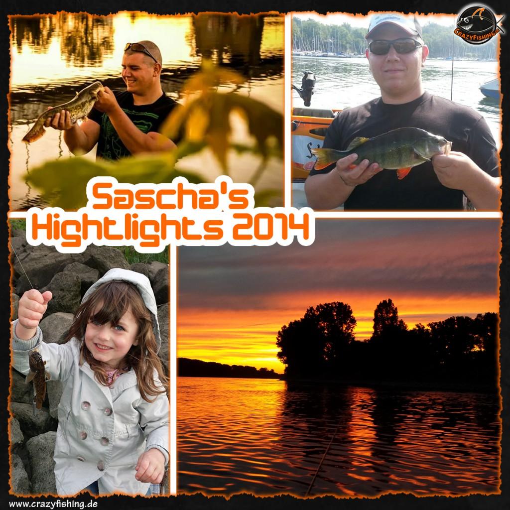 sascha_collage
